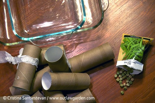Toilet paper tubes, a casserole dish and seeds. That's just about all you'll need to start peas (or any seeds) indoors.