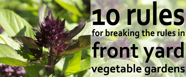10 rules for breaking the rules in front yard vegetable gardens