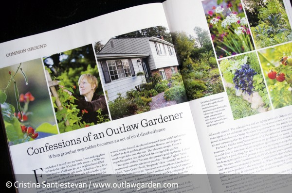 Confessions of an Outlaw Gardener in the August / September 2012 issue of Organic Gardening Magazine