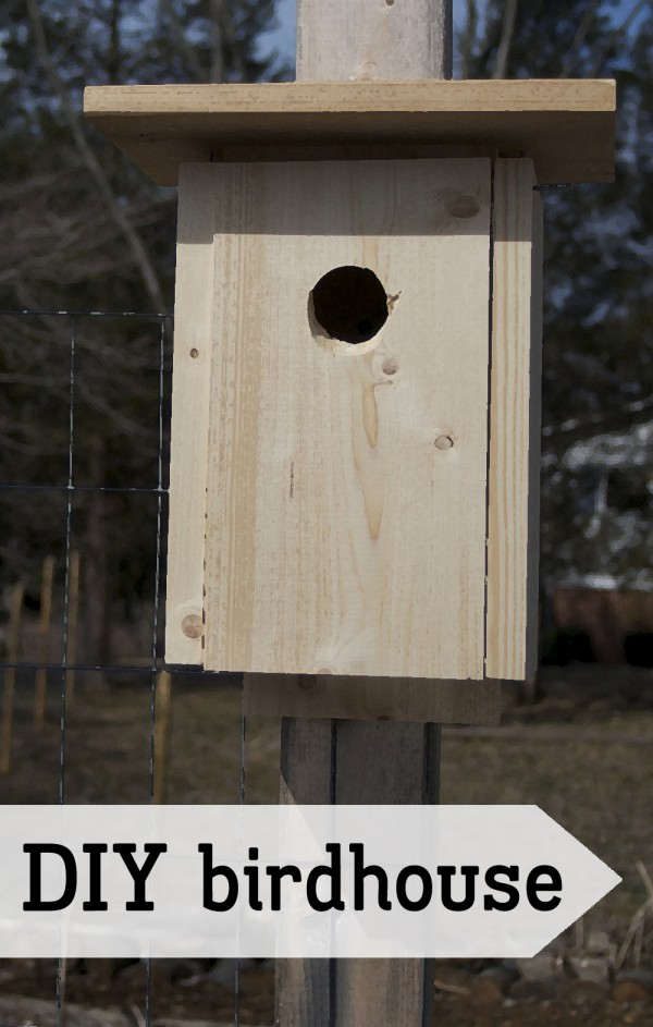 Diy simple bird house outlaw garden for Simple birdhouse