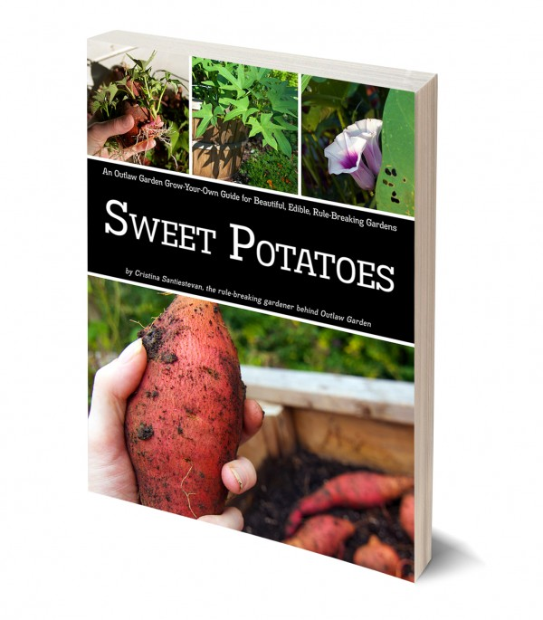 Outlaw Garden Grow-Your-Own Guide to Sweet Potatoes