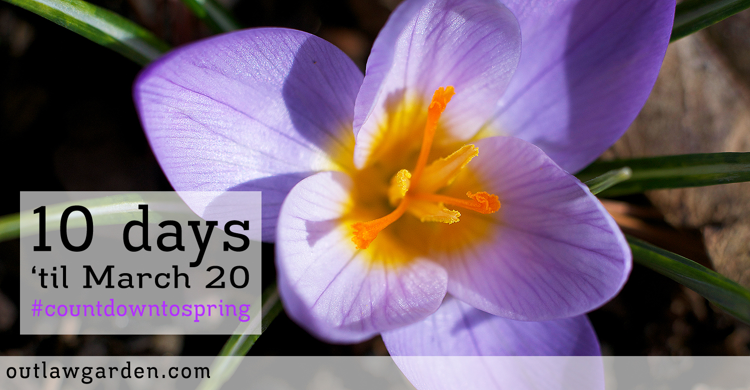 Spring Is Nearly Here: Just 10 Days to Go!